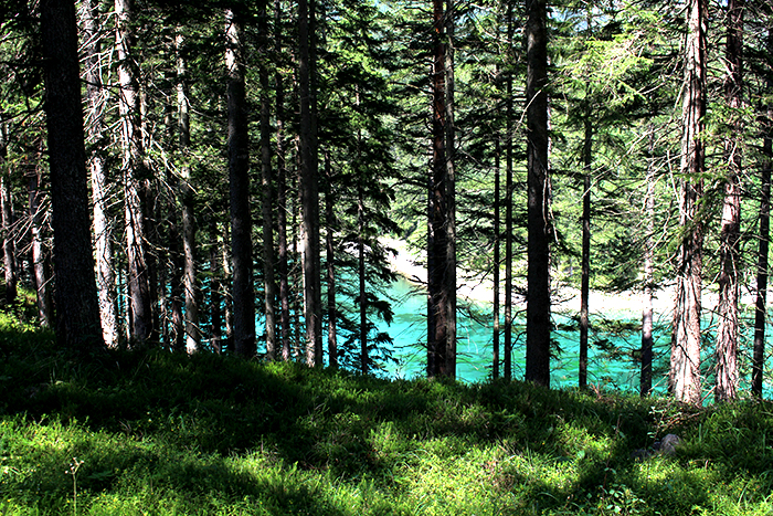 Grüner See8