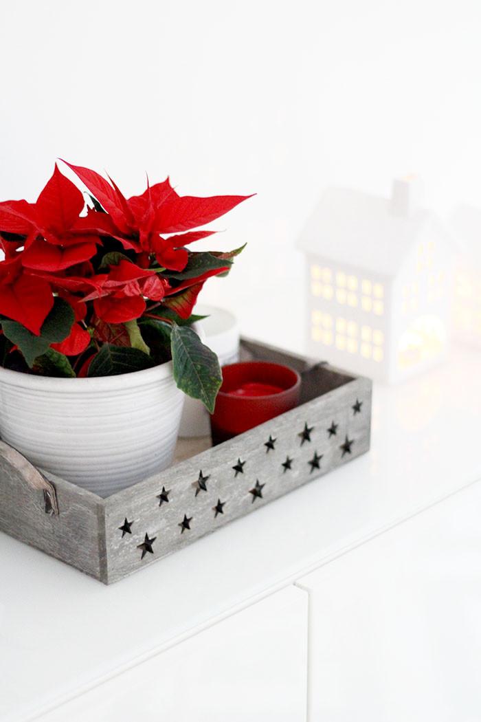 Weihnachtsputz mit Dyson 6