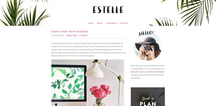 gratis wordpress theme estelle