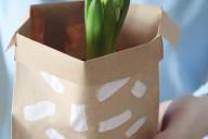 Blumen veschenken Hyazinthe to go