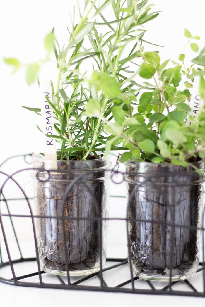 Kräuterbeet Küche diy kräutergarten für die küche im jar provinzkindchen