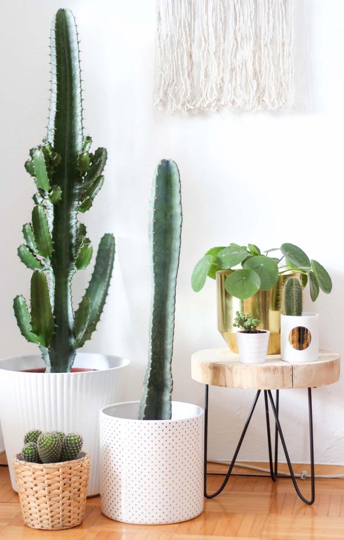 provinzkindchen seite 2 von 217 lifestyle blog graz rezepte wohnen diy. Black Bedroom Furniture Sets. Home Design Ideas