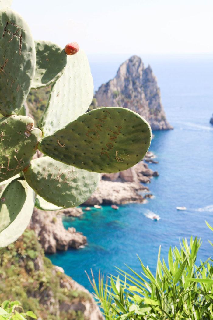 Ein Tagesausflug nach Capri