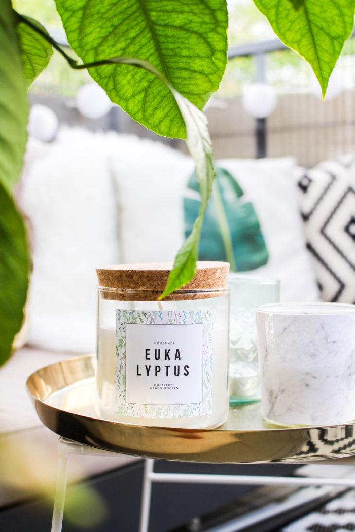 Eukalyptus Kerze gegen Mücken selber machen + Free Printable